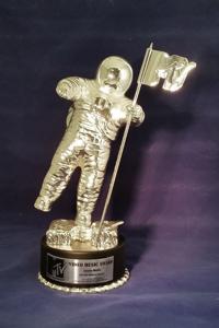 MTV Video Music Award